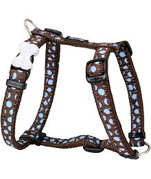 Dog Harness 12 mm x 30-44 cm - Blue Spots on Brown