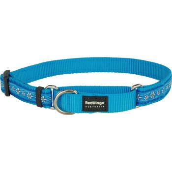 Martingale Collar 15 mm – Daisy Chain Turquoise