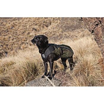 Arma-Doggo – Dog Coat – Red / Blk – Petit -1