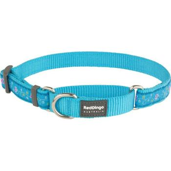 Martingale Collar 15 mm – Butterfly Turquoise