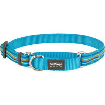 Martingale Dog Collar 25 mm- Dreamstream Turquoise