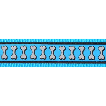 Martingale Dog Collar 25 mm– Refl. Bones Turquoise