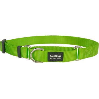 Martingale Collar 25 mm – Lime