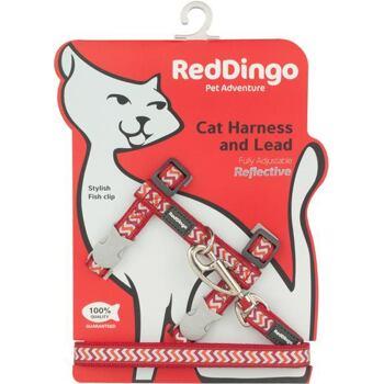 Cat Harnees & Lead - Reflective Ziggy Red