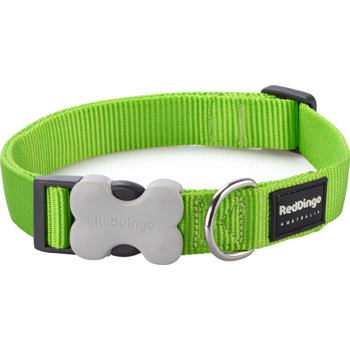 Dog Collar 20 mm x 30-47 cm – Lime